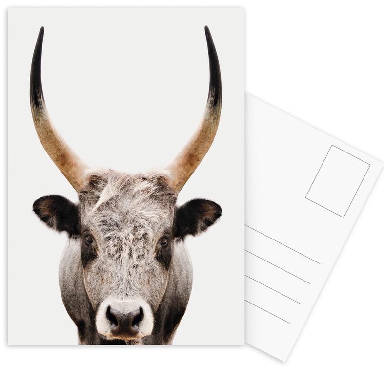 Cows, Nursery & Art for Kids, Bull Postcard Set