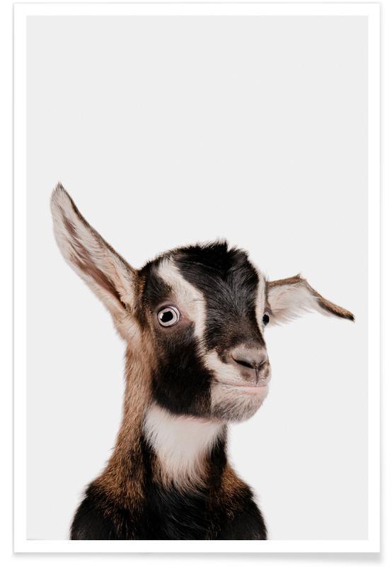 Børneværelse & kunst for børn, Goat Plakat