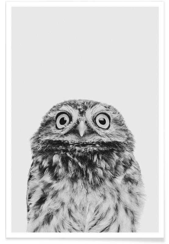 Art pour enfants, Chouettes, Noir & blanc, Owl Classic affiche