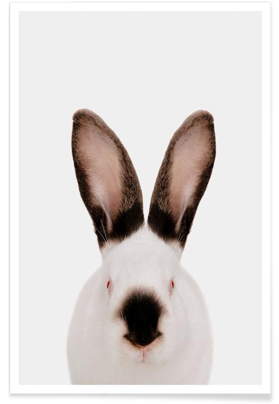 Kaniner, Børneværelse & kunst for børn, Rabbit Plakat