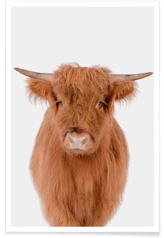 Cows, Nursery & Art for Kids, Young Highland Cow Poster