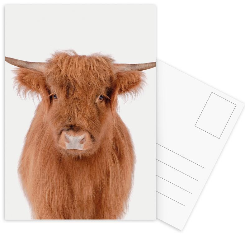 Kühe, Kinderzimmer & Kunst für Kinder, Young Highland Cow -Postkartenset