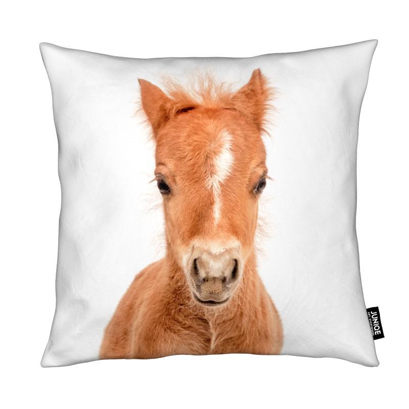 Pferde, Kinderzimmer & Kunst für Kinder, Foal