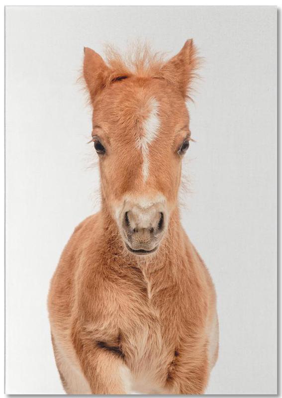 Pferde, Kinderzimmer & Kunst für Kinder, Foal -Notizblock