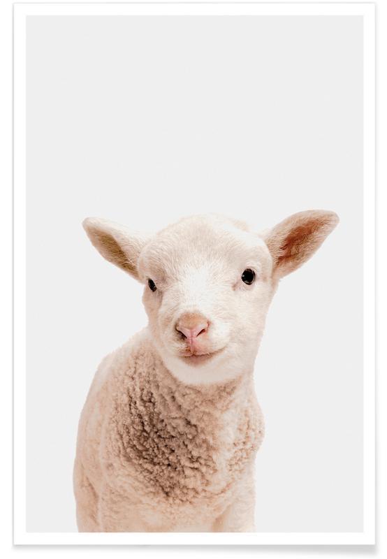 Schafe, Kinderzimmer & Kunst für Kinder, Little Lamb -Poster