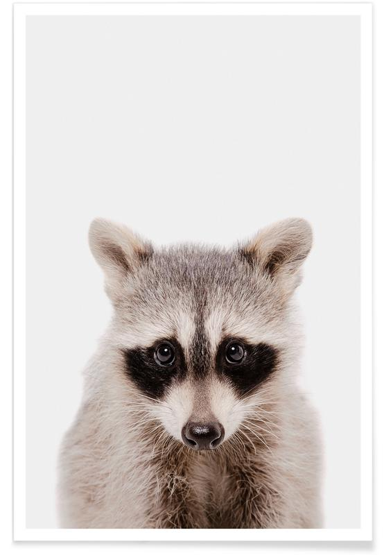 Kunst voor kinderen, Raccoon poster