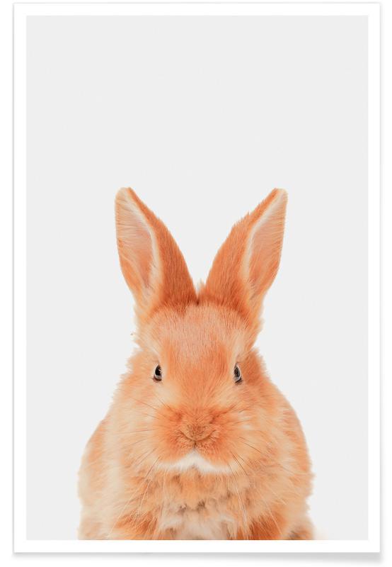 Lapins, Art pour enfants, Pâques, Bunny affiche