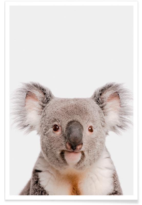 Koala's, Kunst voor kinderen, Koala poster