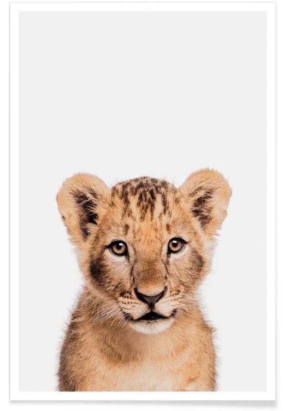 Art pour enfants, Animaux de safari, Lion Cub II affiche