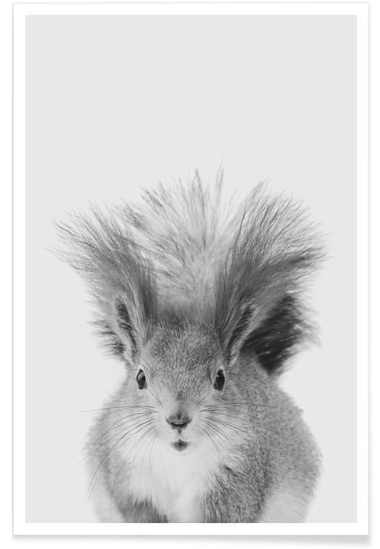 Noir & blanc, Art pour enfants, Squirrel affiche