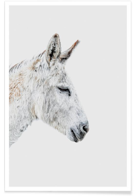 Kinderzimmer & Kunst für Kinder, Donkey -Poster