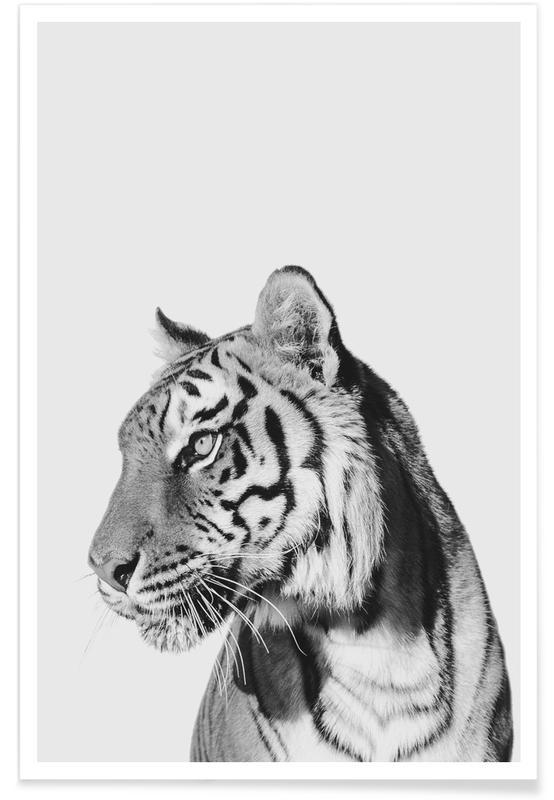 Art pour enfants, Tiger II affiche