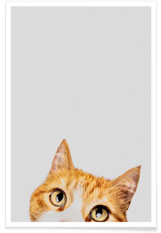 Chats, Art pour enfants, Cat affiche