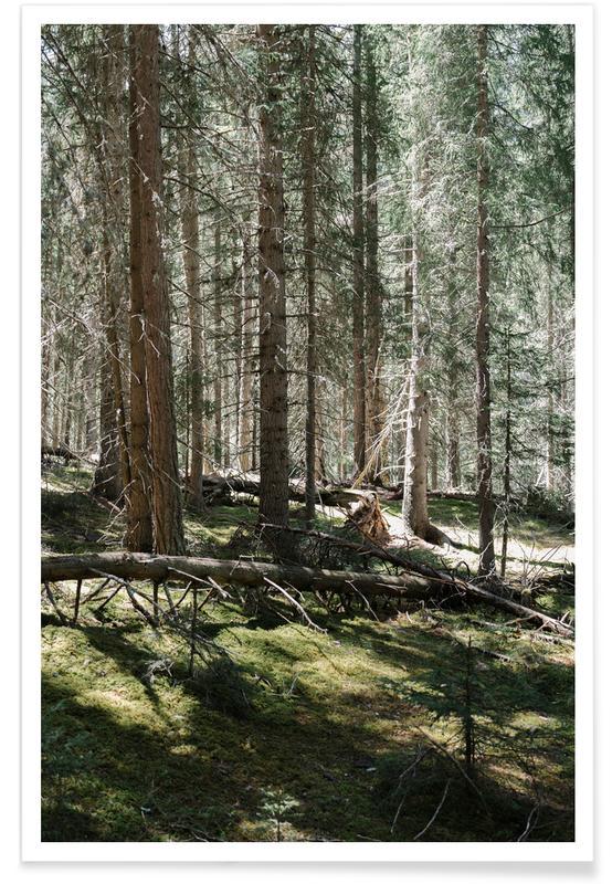 Forêts, Vertical Green Lines affiche