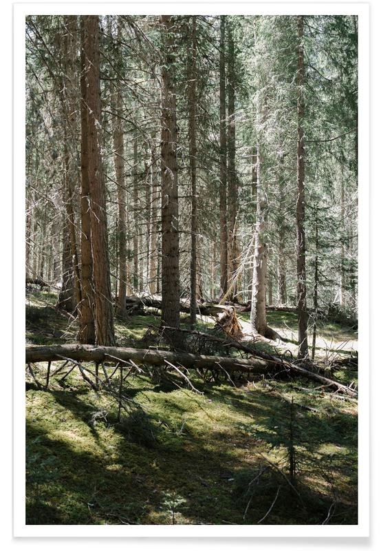 Forests, Vertical Green Lines Poster