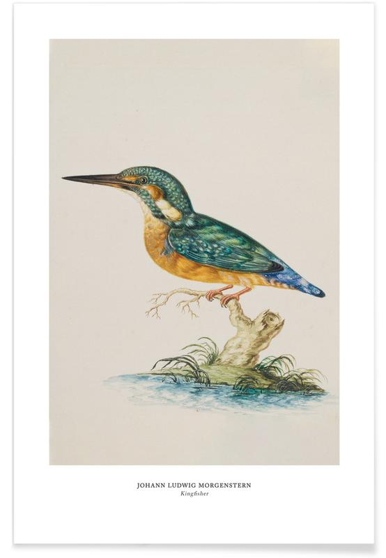 Johann Ludwig Morgenstern, Johann Ludwig Morgenstern - Kingfisher Poster