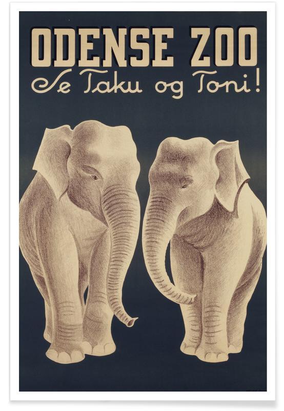 Éléphants, Odense Zoo affiche