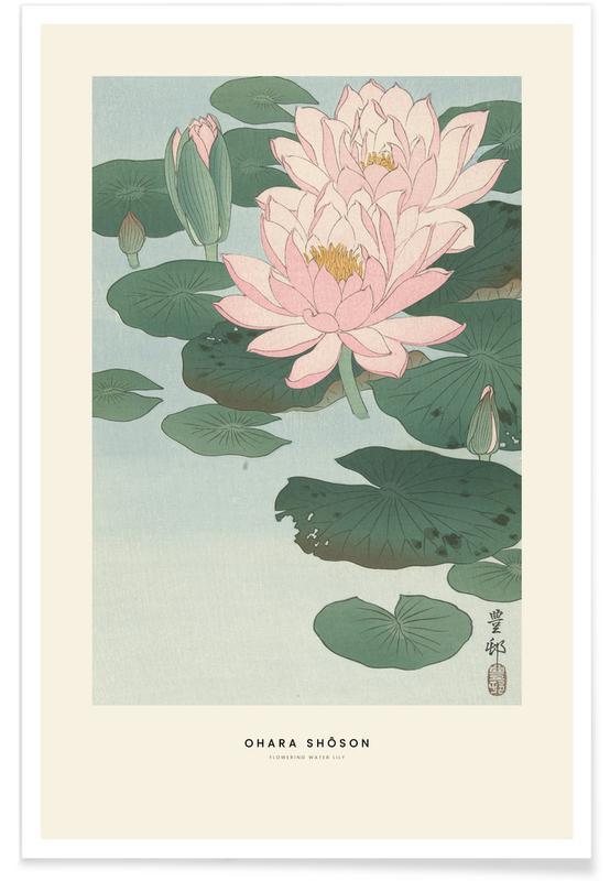 Ohara Shôson, Ohara Shôson - Flowering Water Lily poster