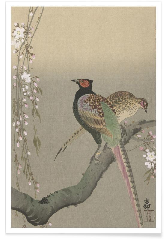 D'inspiration japonaise, Shôson - Pheasants in a Cherry Blossom Branch. affiche