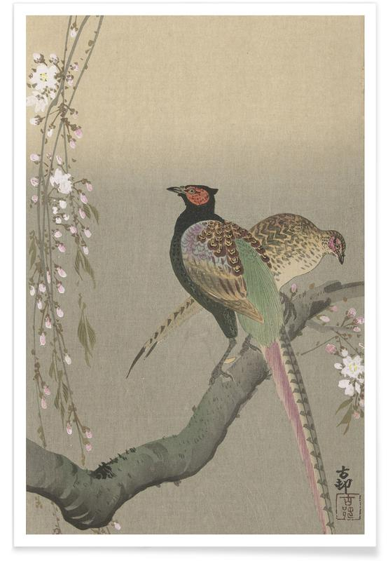 Japanese Inspired, Shôson - Pheasants in a Cherry Blossom Branch. Poster