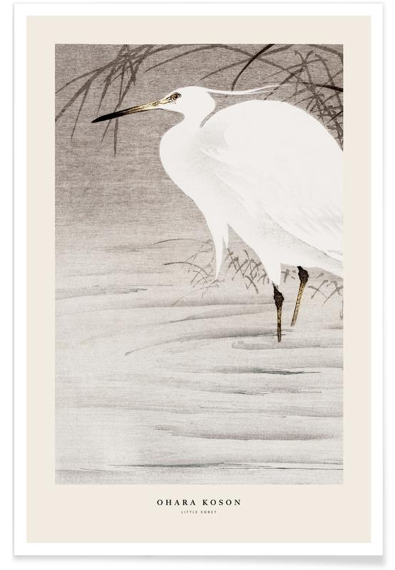 Japanese Inspired, Koson - Little Egret Poster