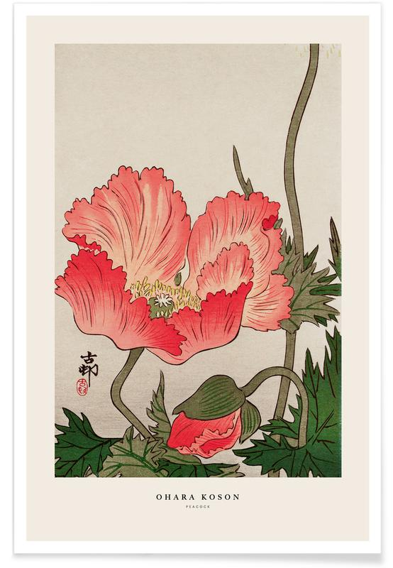 Japanese Inspired, Koson - Birds and Plants Poster