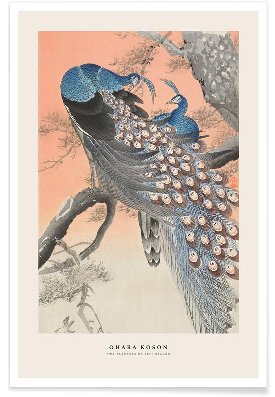 Japanese Inspired, Peacocks, Koson - Two Peacocks on Tree Branch Poster