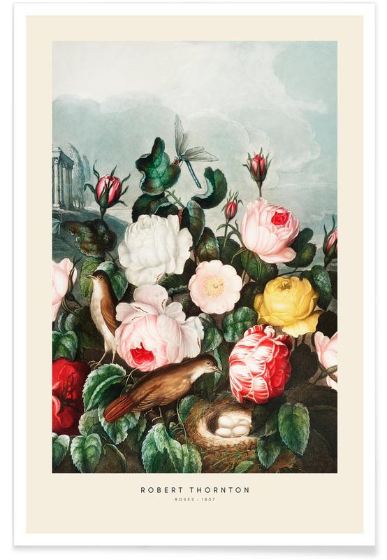 Vintage voyage, Thornton - Roses affiche