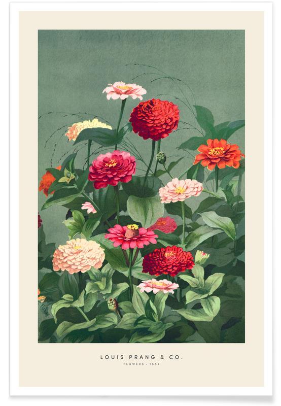 Vintage Travel, Prang & Co. - Flowers Poster