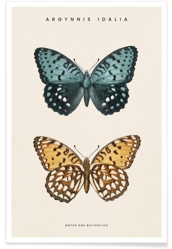 Papillons, Denton - Regal Fritillary affiche