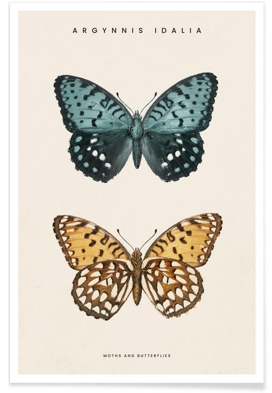 Butterflies, Denton - Regal Fritillary Poster