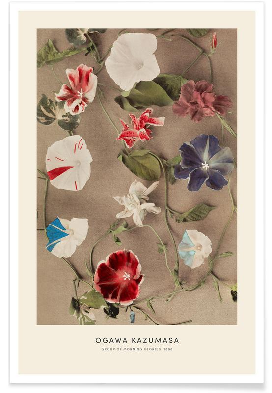 Japanisch inspiriert, Kazumasa - Group of Morning Glories -Poster