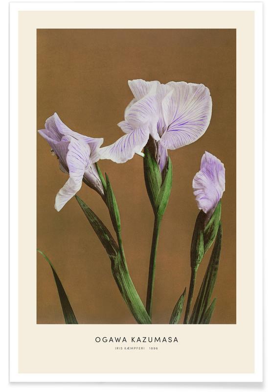 Japanisch inspiriert, Kazumasa - Iris -Poster