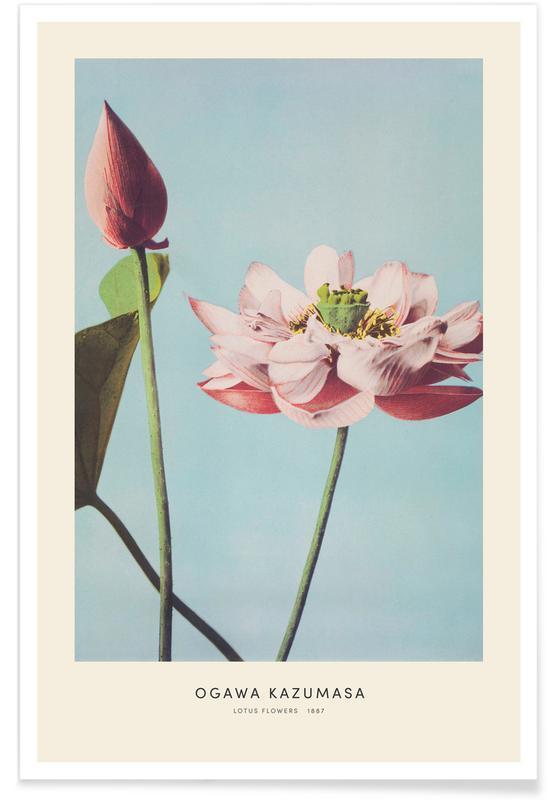Japanisch inspiriert, Kazumasa - Lotus Flowers -Poster