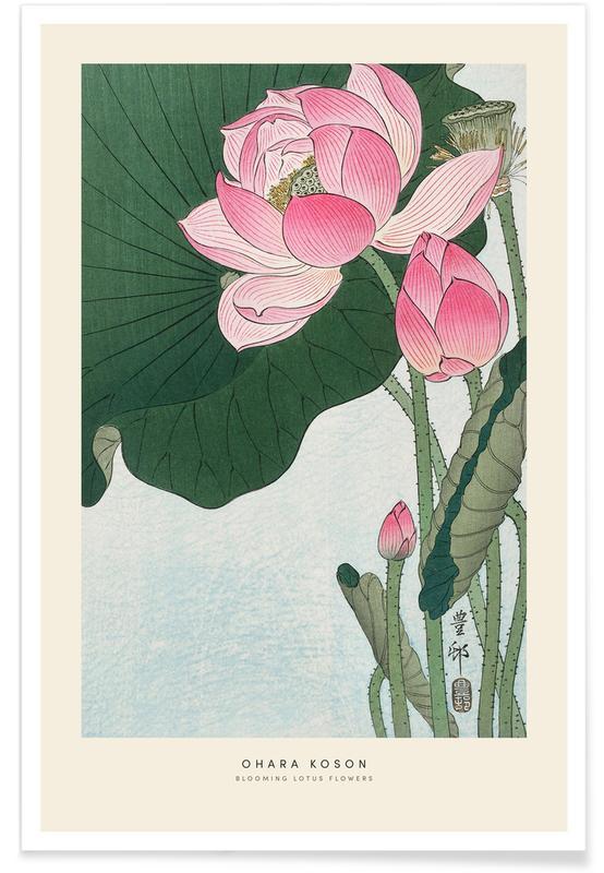 D'inspiration japonaise, Koson - Lotus Flower affiche
