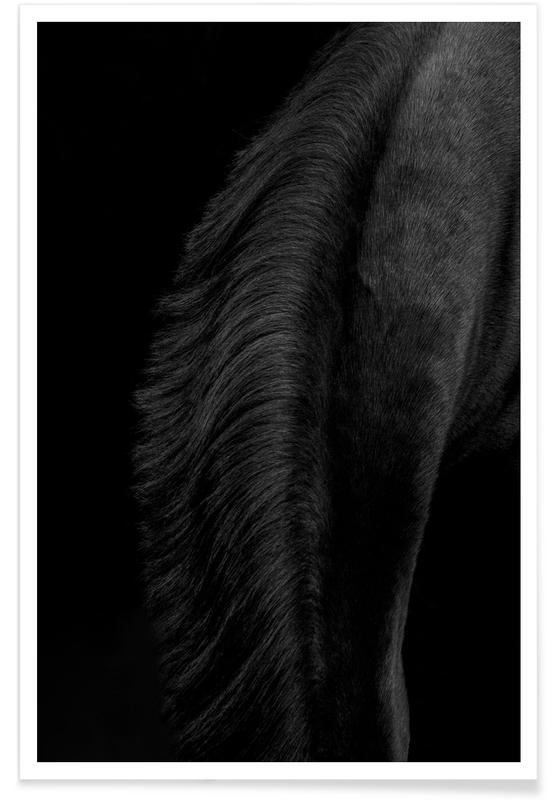 Portraits, Fashion Photography, Gunner 2 Poster