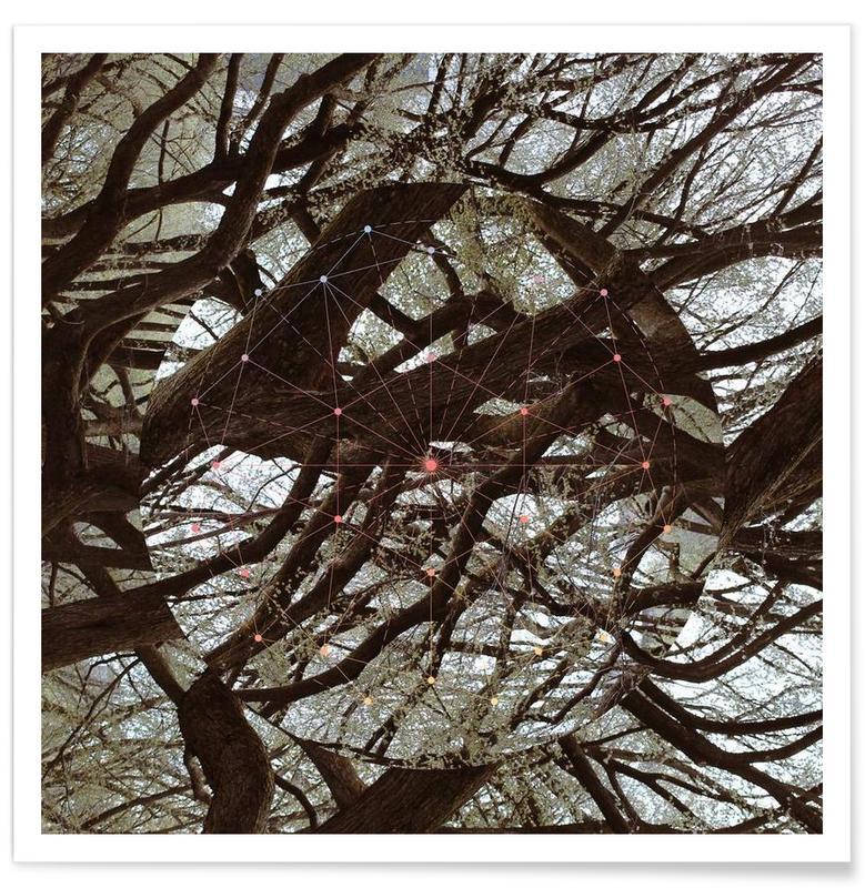 Forêts, Afterlife affiche