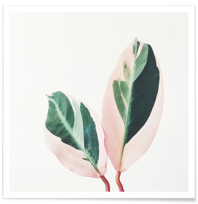 Leaves & Plants, Pink Leaves Poster