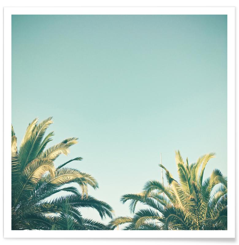 Palms, Summer Time Poster