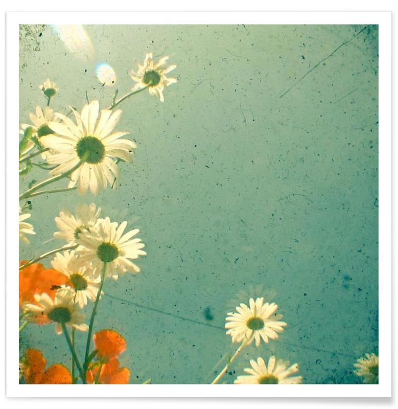 Marguerites, Daisy affiche