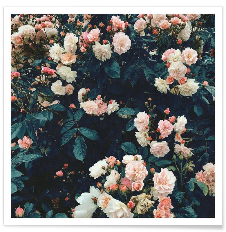 Rozen, Secret Garden poster