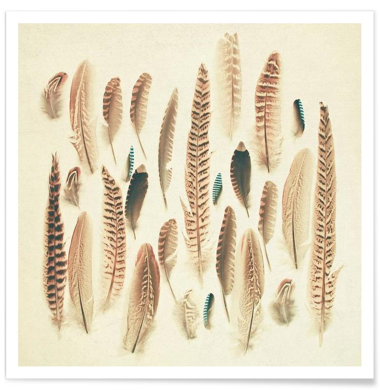 Found feathers affiche