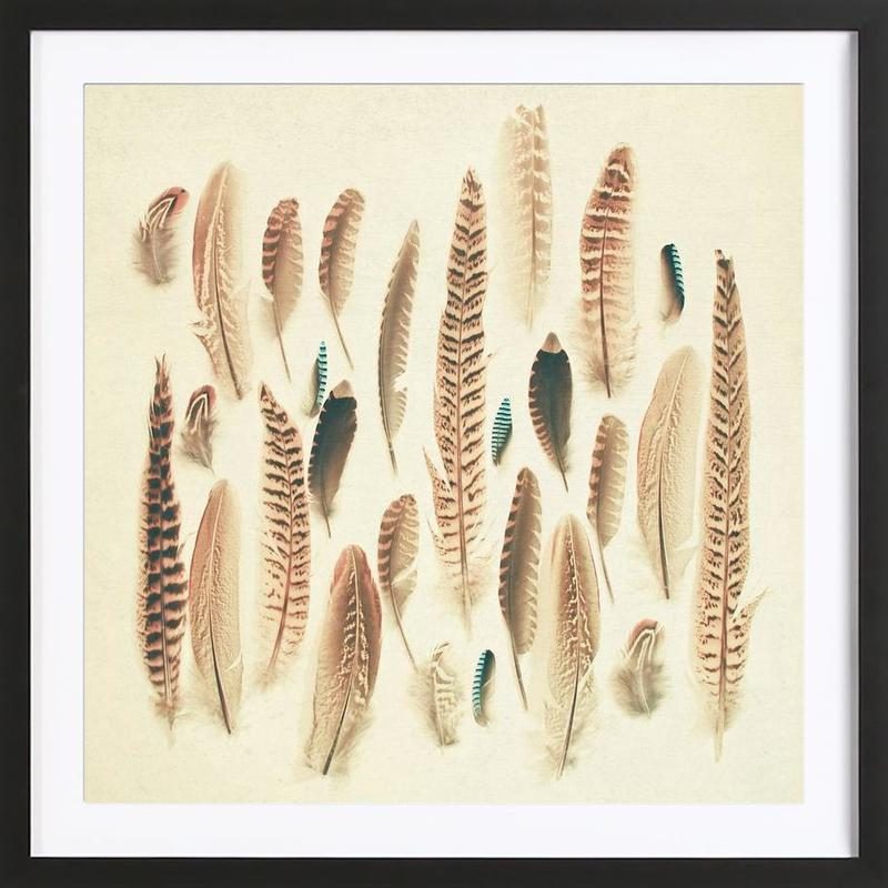 Found feathers Framed Print