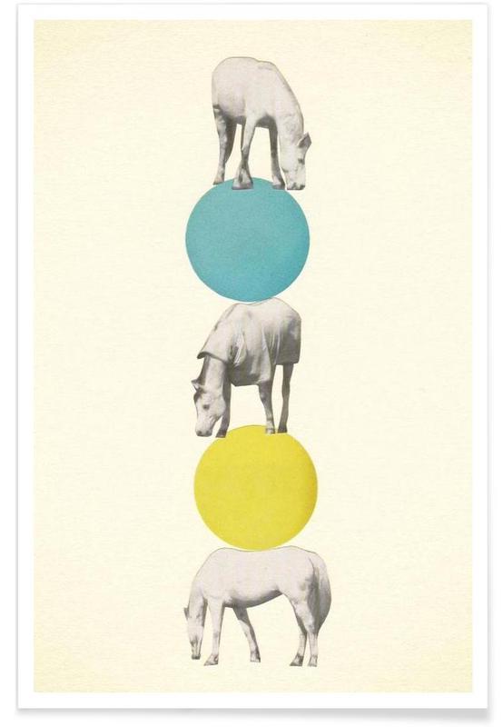 Chevaux, Horseplay affiche