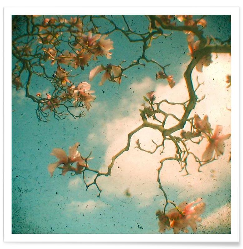 , Magnolia fall Poster