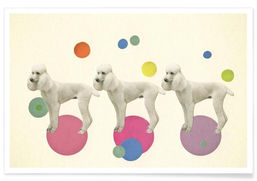 Oodles of poodles affiche