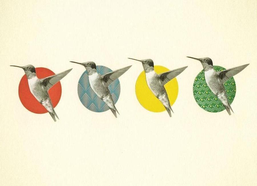 The hummingbird dance canvas doek