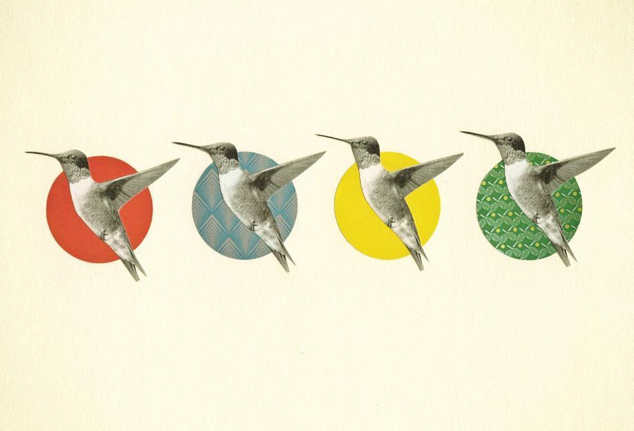 The hummingbird dance Acrylic Print