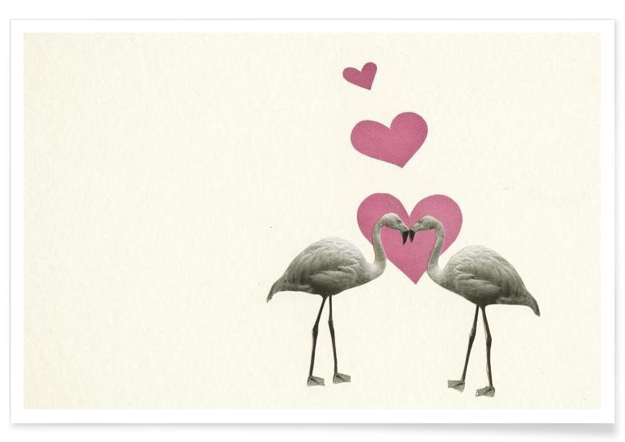 Love Birds affiche