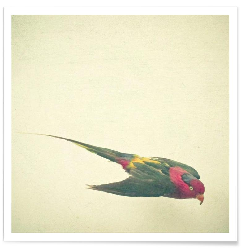 Bird study #4 Poster